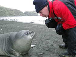John-Martel-elephant-seal-pup250