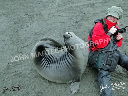 john-martel-seal-arching